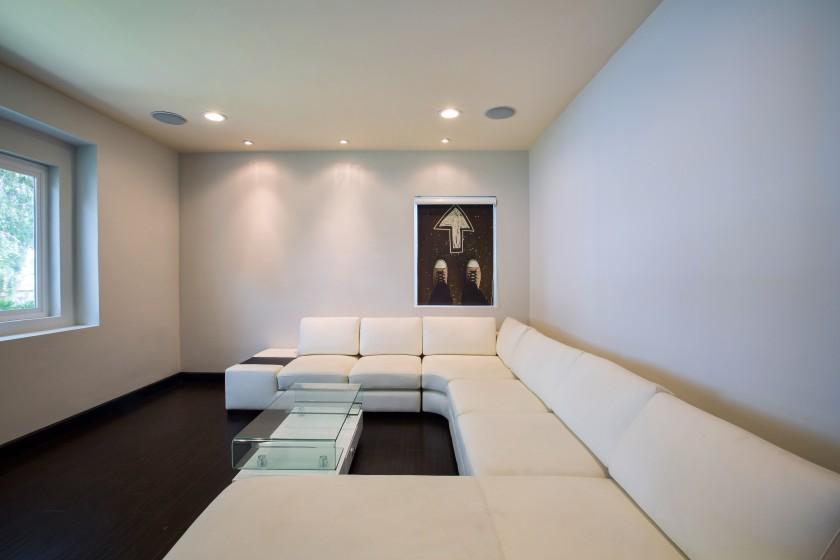 living room theme